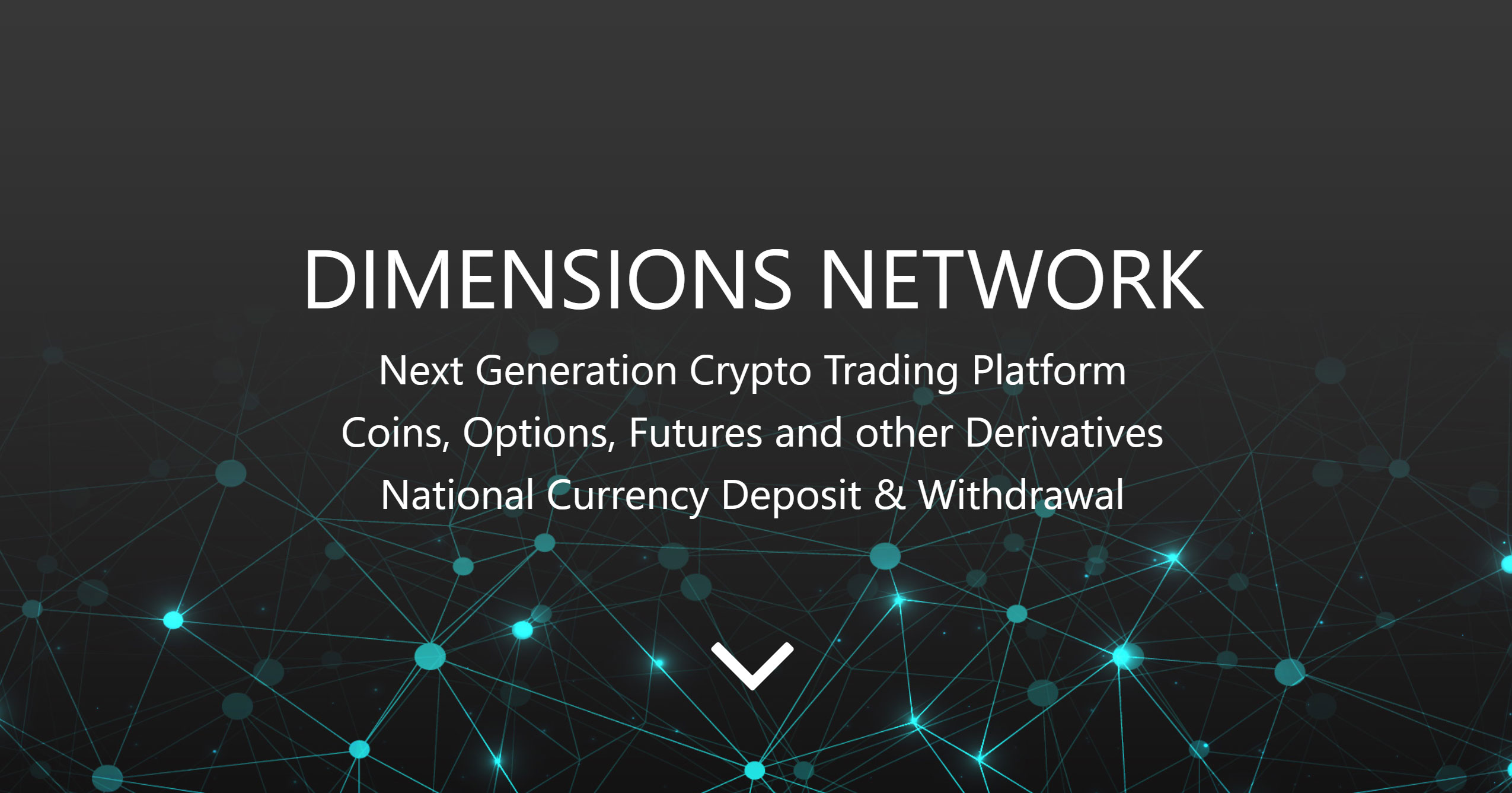 Image results for bounty dimensions